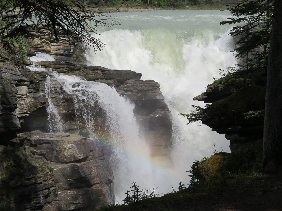 Athabasca Wasserfälle