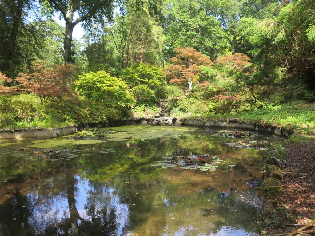 Parklandschaft in Exbury Gardens mit kleiner See