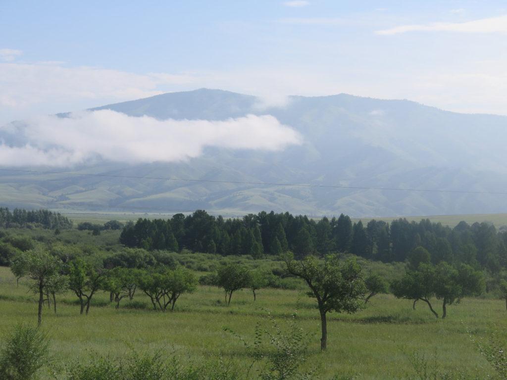 Landschaft in der Mongolei, grün, mit eine Wolke davor