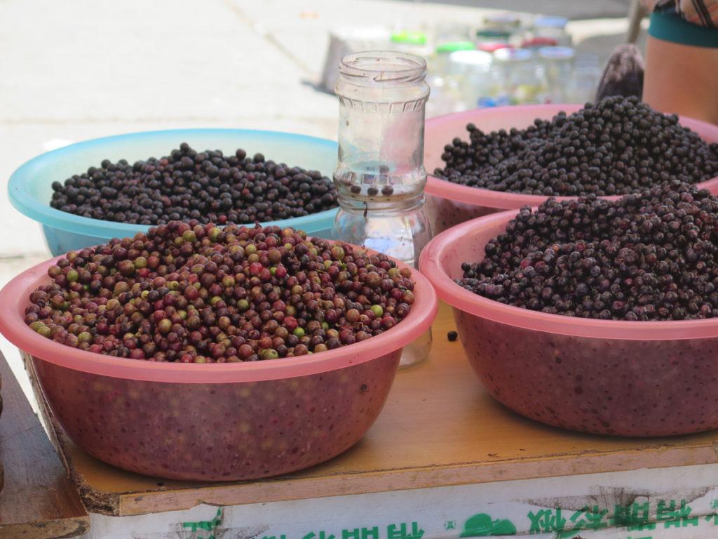 Beeren auf dem Markt in Erdenet
