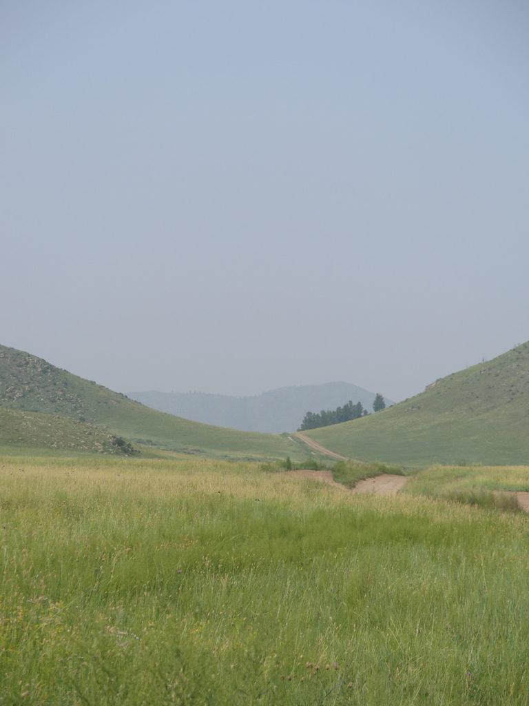 Mongolische Landschaft grüne Bergen