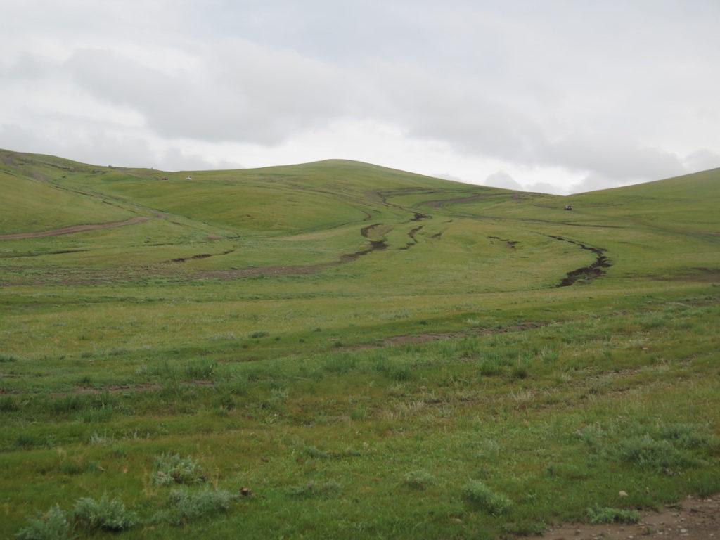Piste in der Mongolei, Gras und weit weg ein Auto