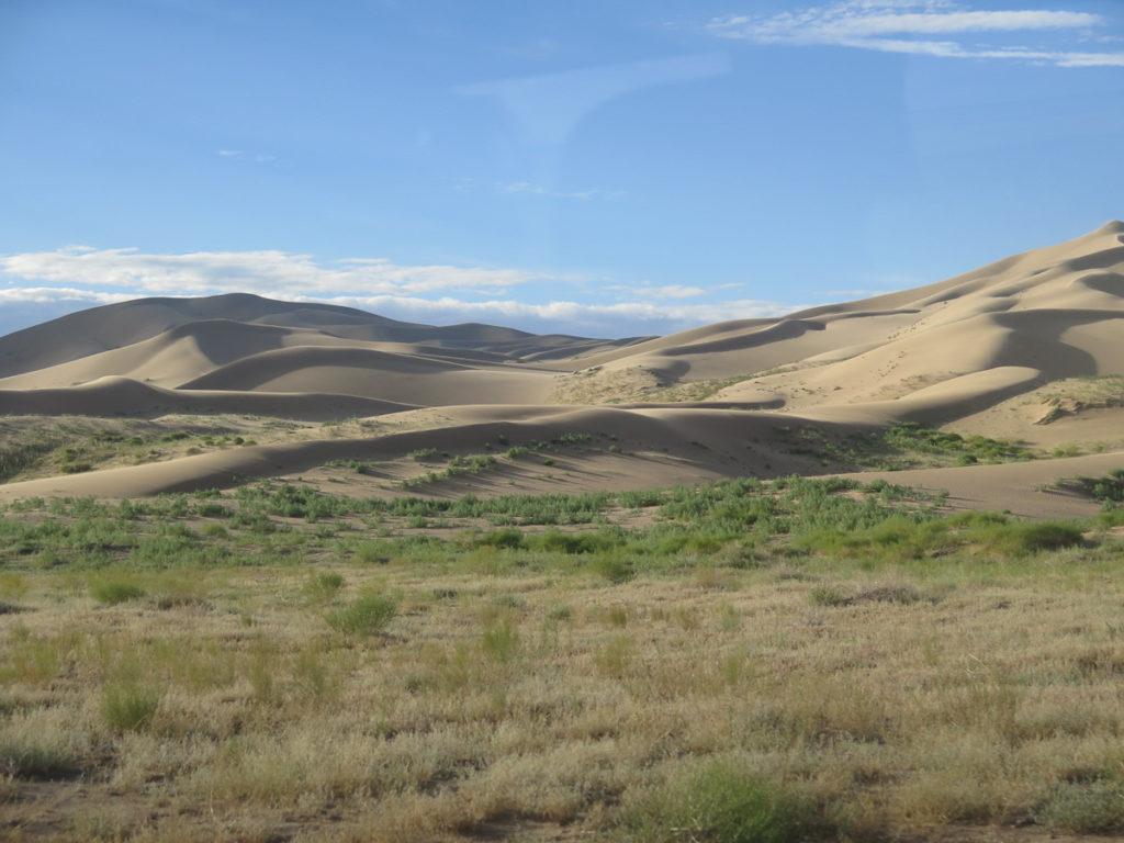 Sanddünen Khongoryn Els in der Wüste Gobi, blauer Himmel, vorne Gras