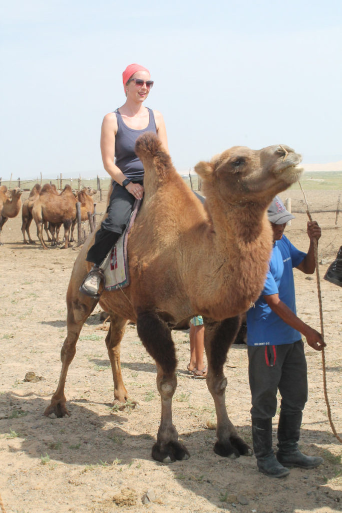 Frau auf Kamel in der Mongolei