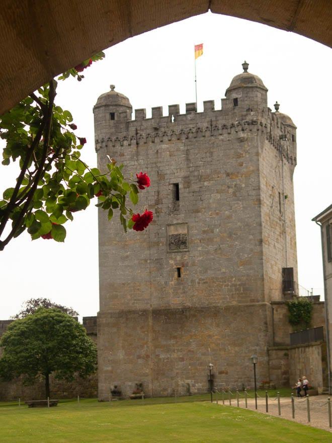 Pulverturm Burg Bentheim im Vordergrund rote Rose