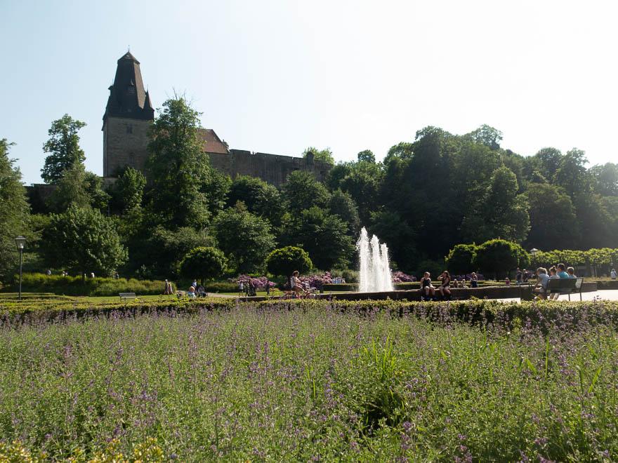 Blick auf Burg Bentheim vom Schlosspark aus, Lavendel im Vordergrund, dahinter einen Brunnen