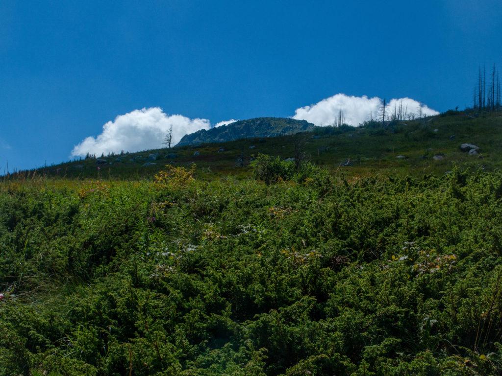Gipfel Vitosha, blaue Himmel und eine Wolke