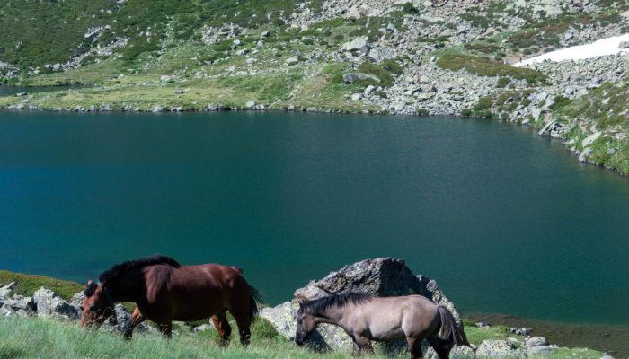 Wundervolle Wanderung zu Estanys de Tristaina