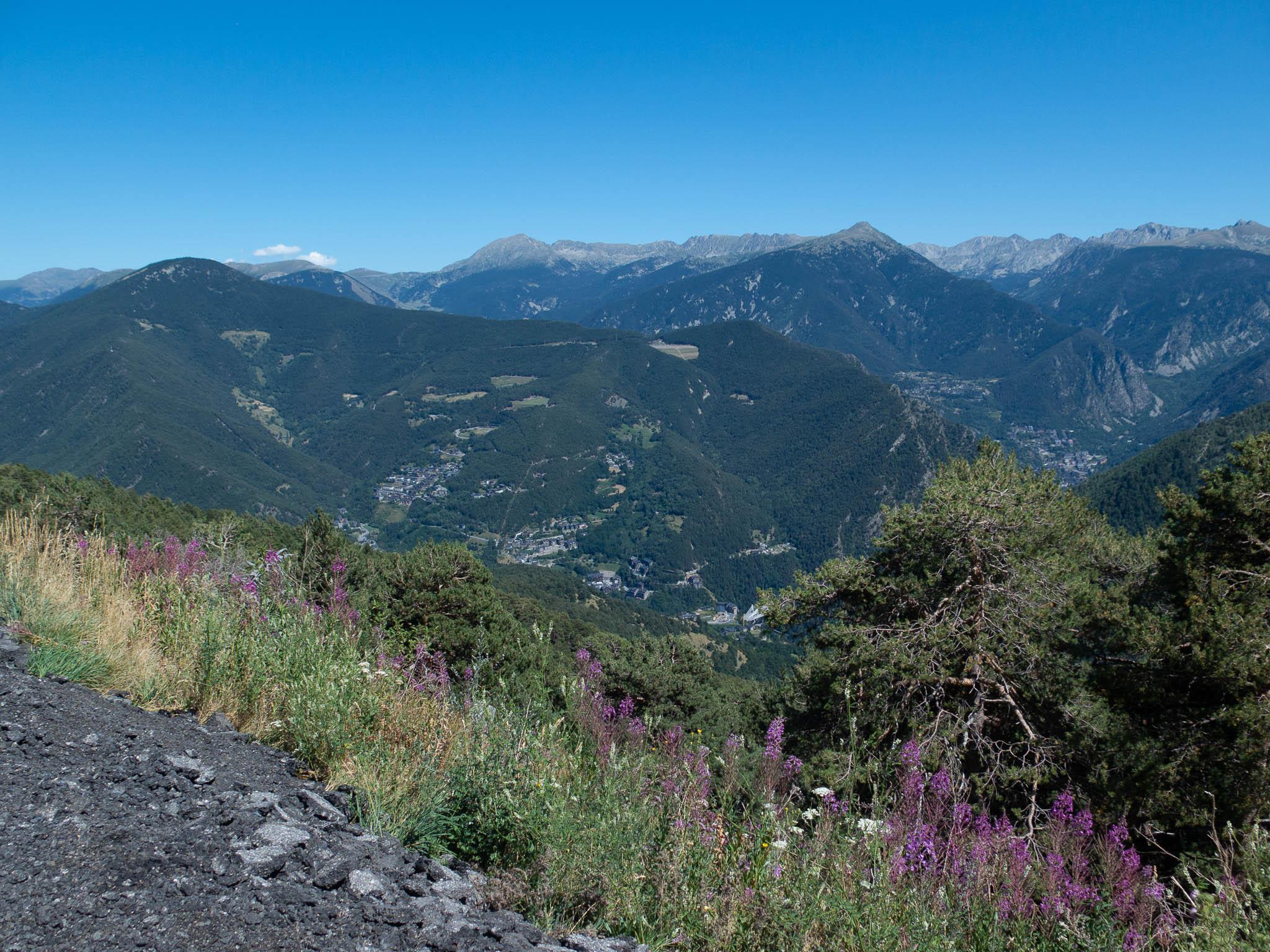 Andorra Vallnord Aussicht auf den Bergen, im Vordergrund lila Blumen