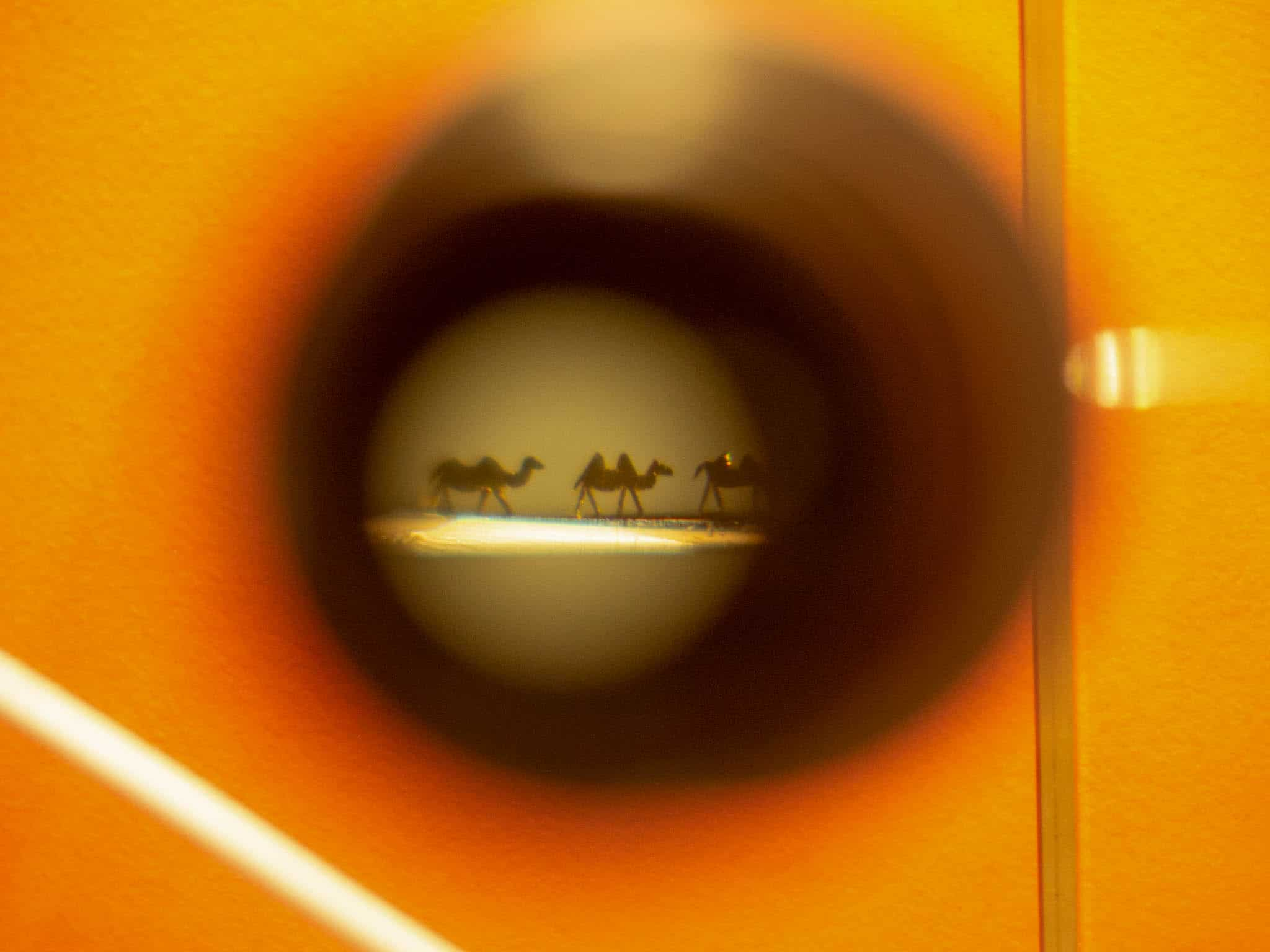 Miniaturkunst im Miniaturmuseum Andorra, Abbildung Kamele, aufgenommen durch eine Lupe. Die Kamele passen im Nadelöhr