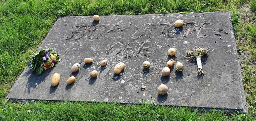 Grabstein Friedrich der Große mit Kartoffeln und Blumen drauf